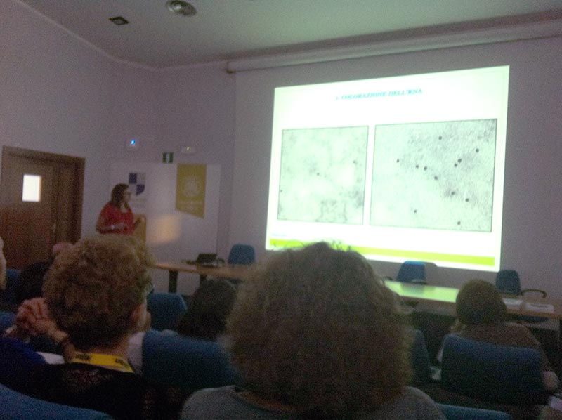 Istochimica - Foto Evento Nuclear Structure - Pavia